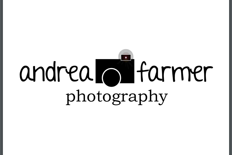 andrea farmer photography